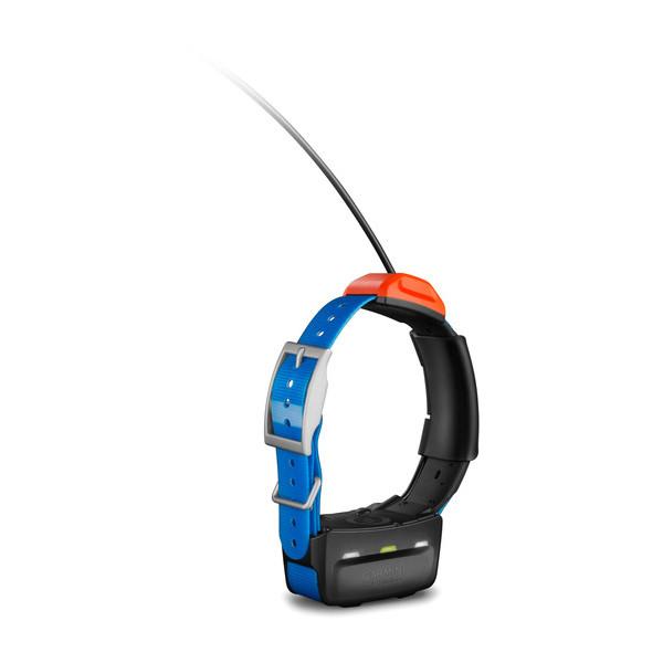 T5 GPS Collar